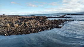 Rocky shore of Galway Bay
